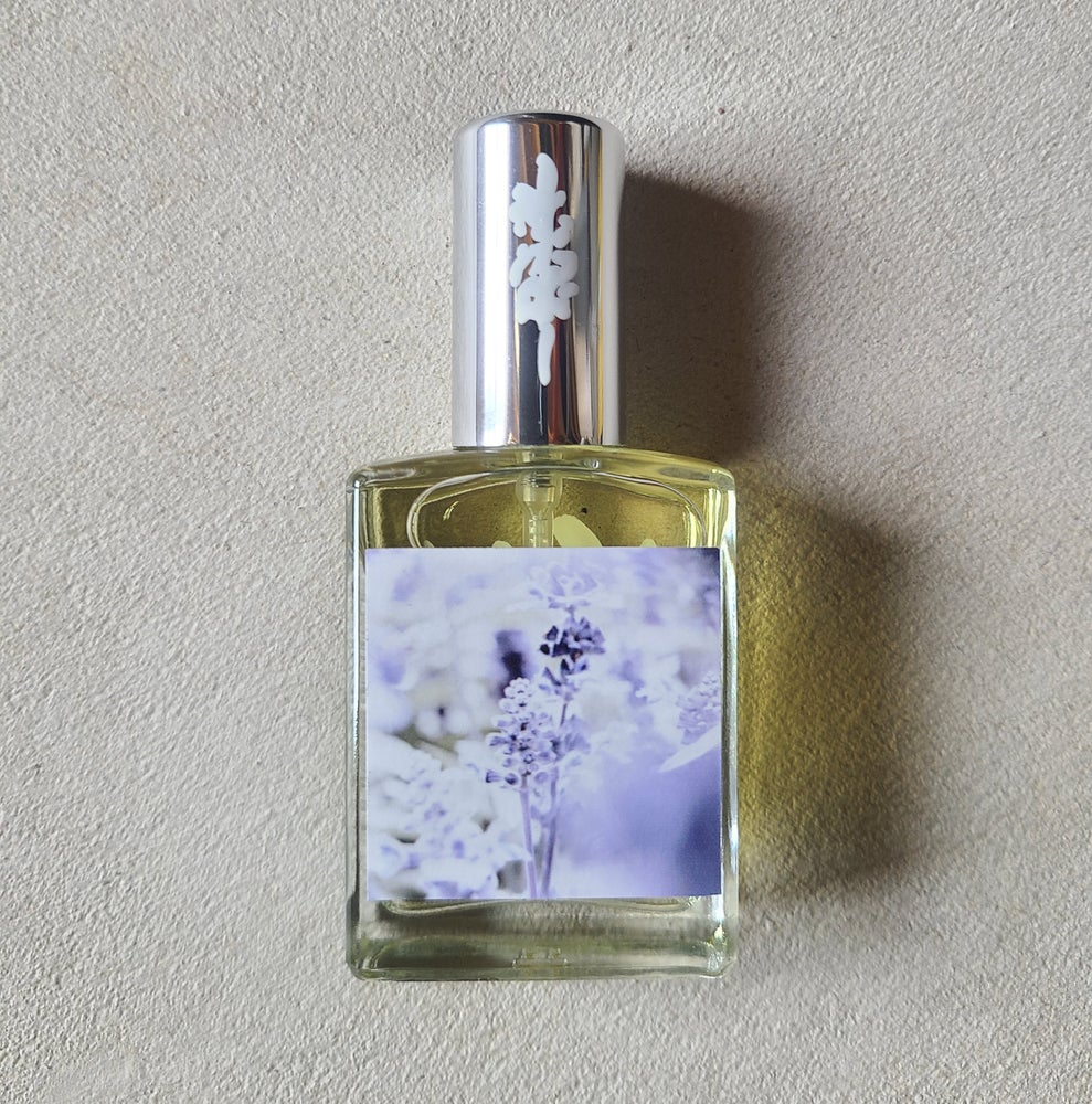 Image of Lavender Woods - 15ml - Extrait