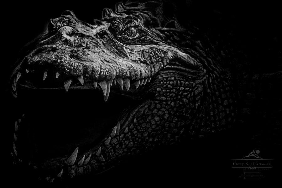 Image of Charcoal Crocodile