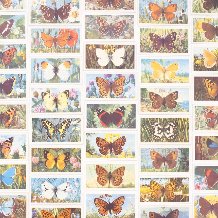 Image of British Butterflies Tea Cards - Complete Set