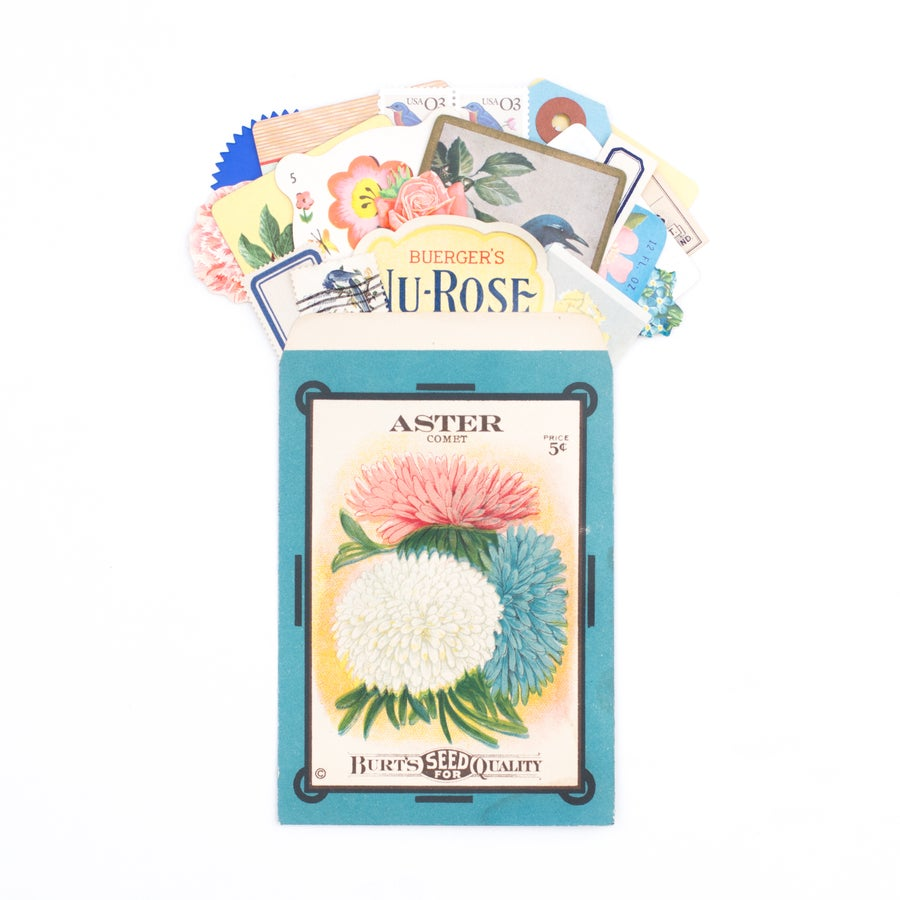 Image of Antique Seed Packet with Pink & Blue Ephemera