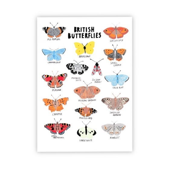 Image of British Butterflies print