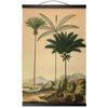 Palm trees of South America | Retro Tropical Print | Palm tree Poster | Vintage Forest Landscape