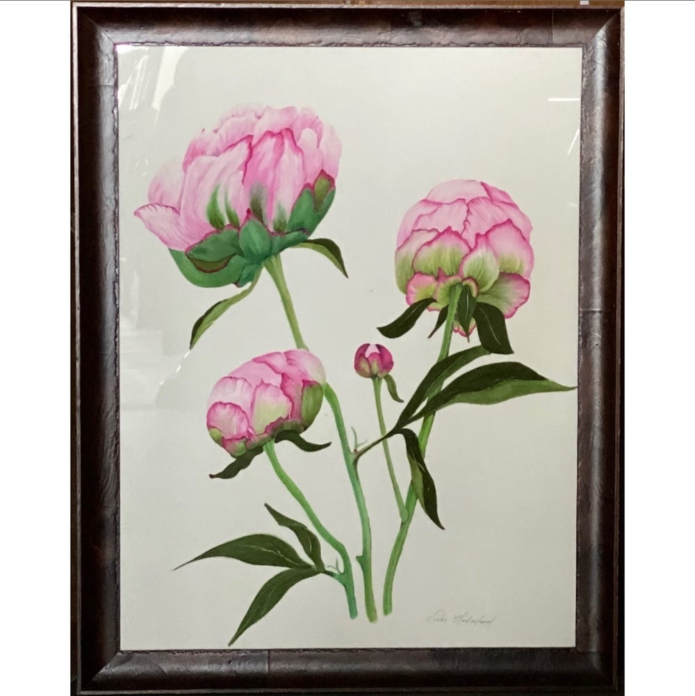 Image of Peonies In Bloom