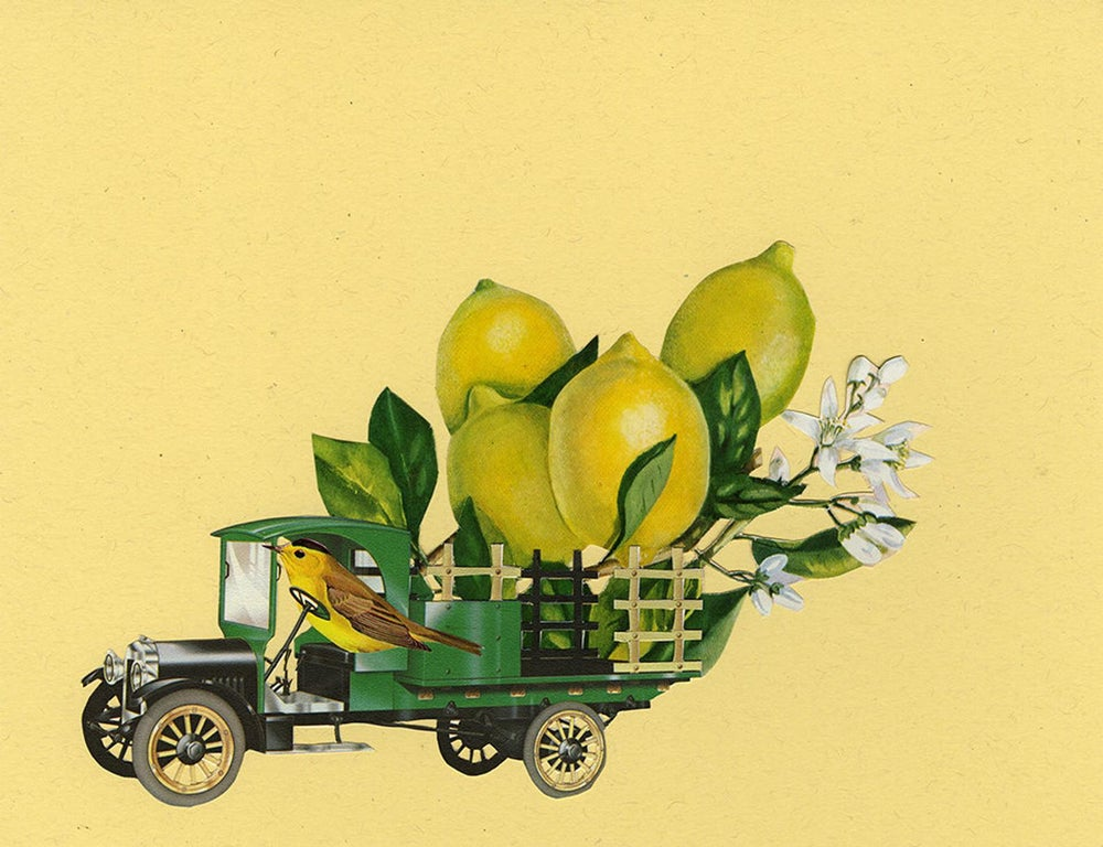 Image of When life gives you lemons. Limited edition collage print.