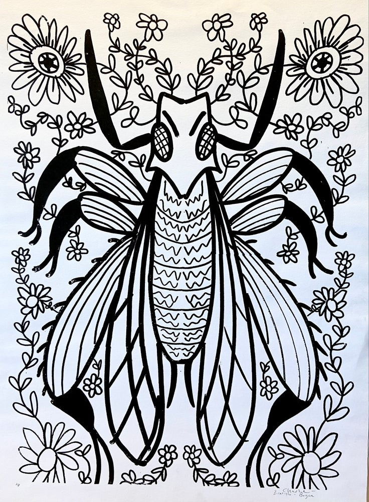 Image of Flower Beetle by CEB