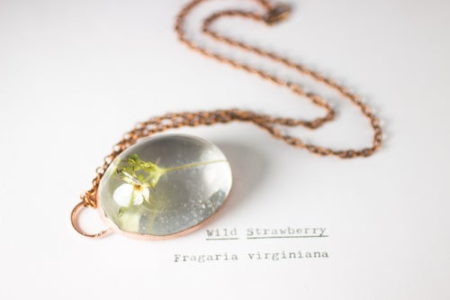 Image of Wild Strawberry (Fragaria virginiana) - Copper Plated Necklace #3