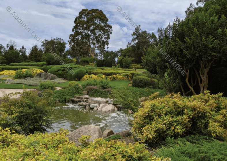 Image of T36 Japanese Gardens Cowra - NEW!