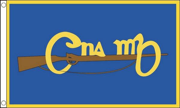 Image of Cumann na mBan Flag