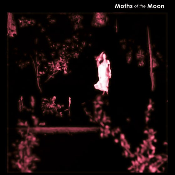 Image of Moths Of The Moon 'Another Place' Mini LP