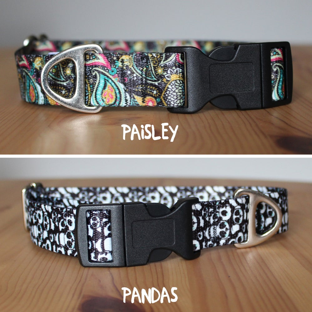 Image of 1 inch buckle dog collar