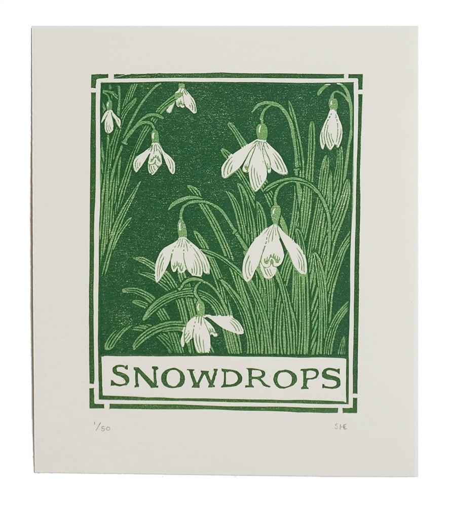 Image of Snowdrops - Linocut