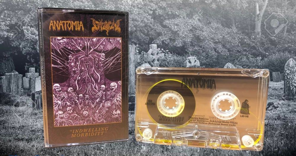 Image of Anatomia/pazuzu Indwelling Morbidity split
