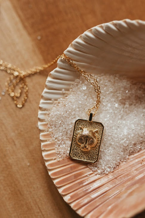 Image of Eye of the Tiger Necklace