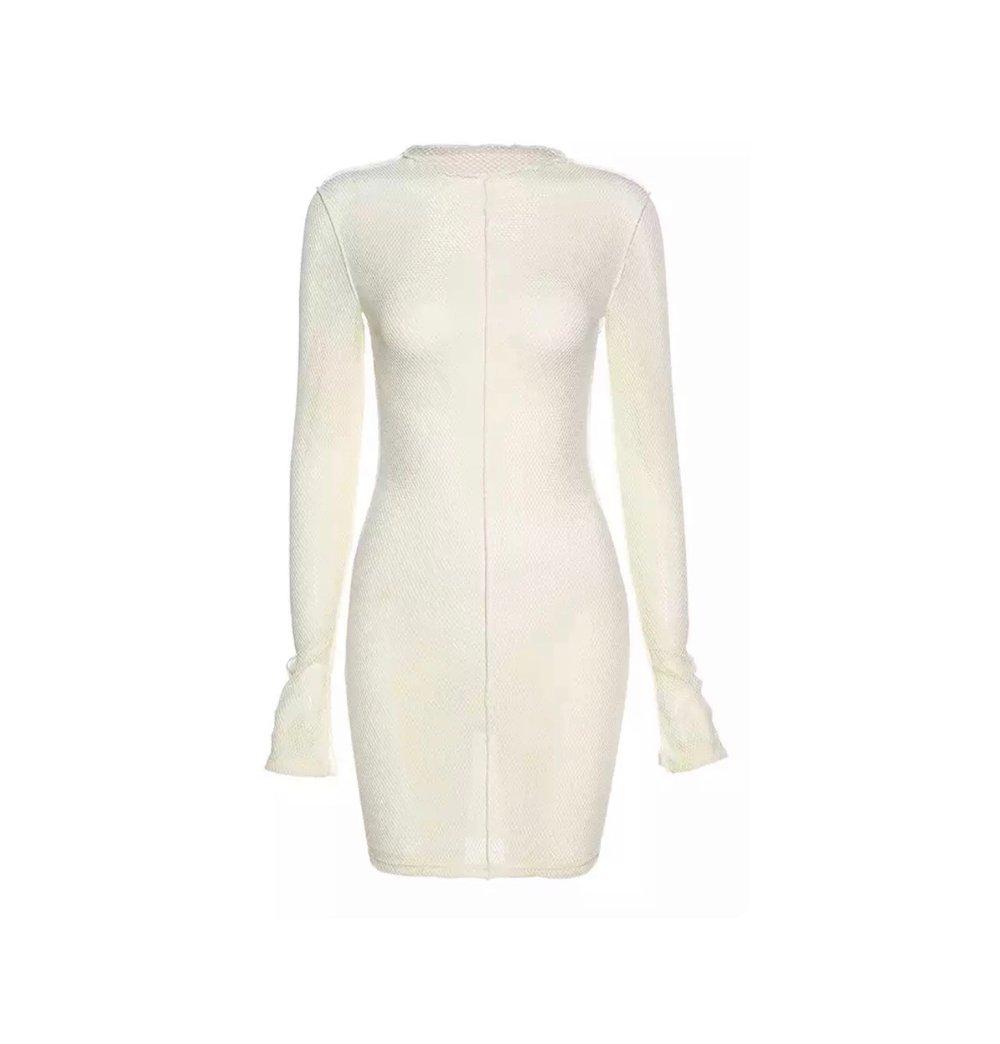 Image of Ivory Net | Dress