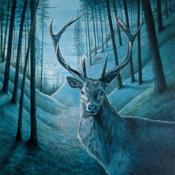 Image of Blue Stag