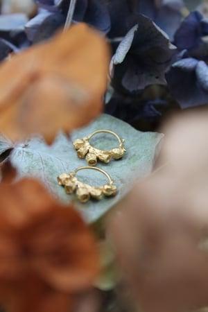 Image of Yellow Gold Vermeil Gumnut Hoops