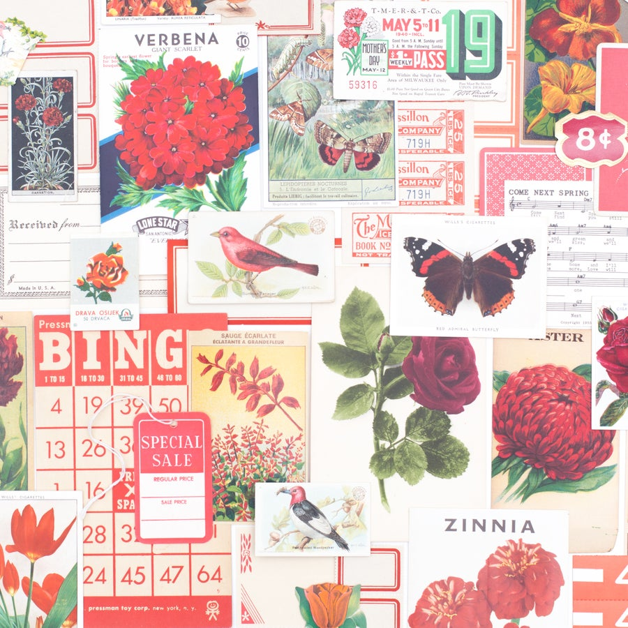 Image of Red Spring Ephemera Bundle