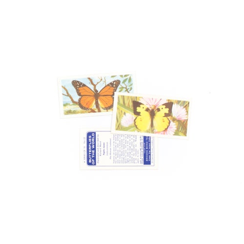 Image of Butterflies of the World Tea Cards - Complete Set