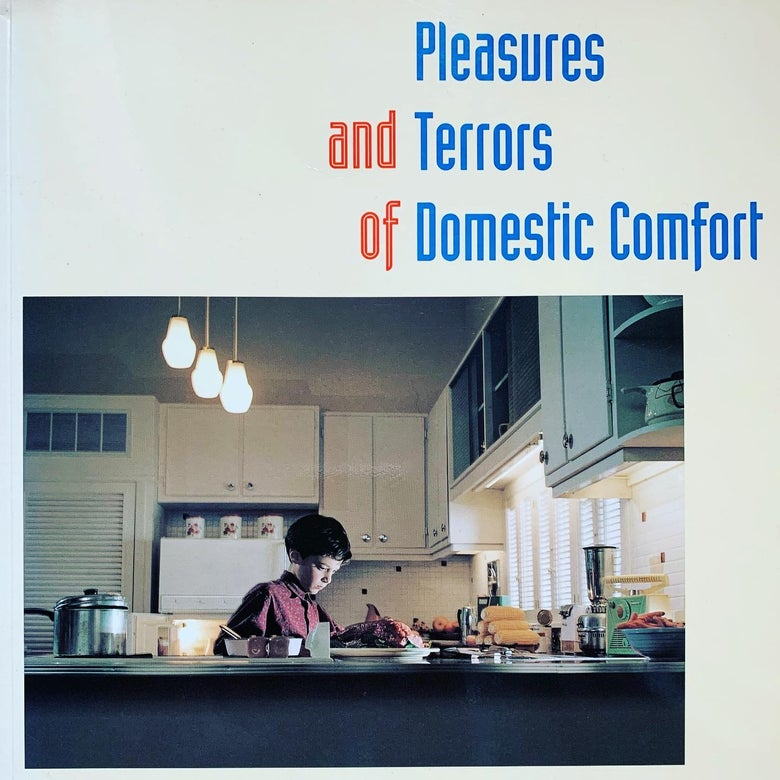 Image of (Peter Galassi)(Pleasures and Terrors of Domestic Comfort)