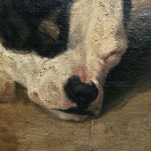 Image of 1867, French, Pet Portrait Painting, 'Bulldog,'