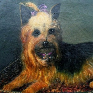 Image of 19thC, English, Pet Portrait Painting, Yorkshire Terrier, 'Tilly.'
