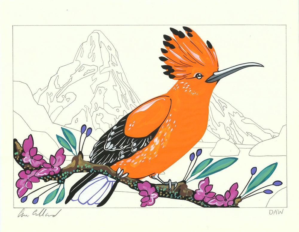 Image of Hoopoe and Helena