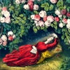 Sleeping Beauty Silk for John Derian