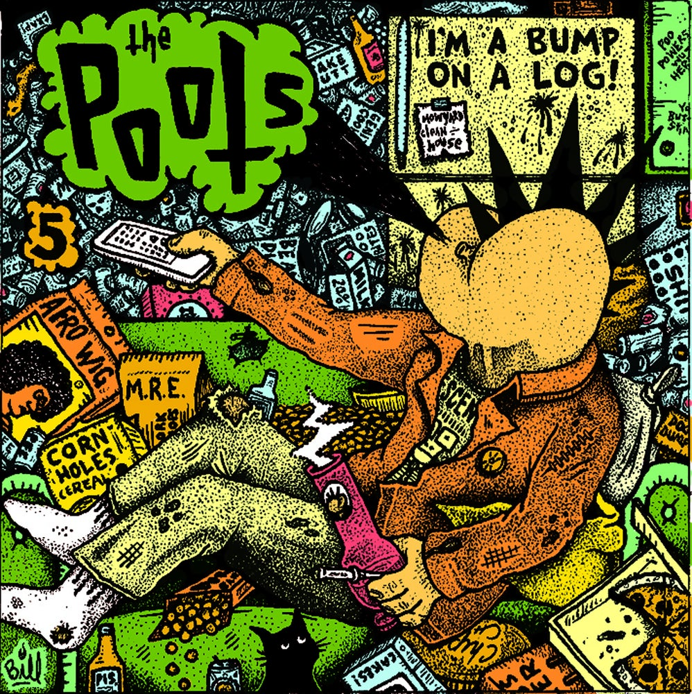 "Image of The Poots ""Bump On A Log"" CD"