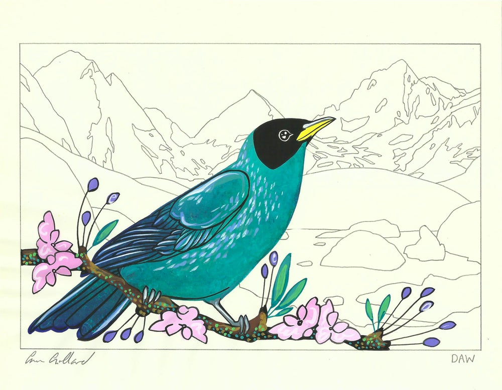 Image of Turquoise Honeycreeper and Ottoline