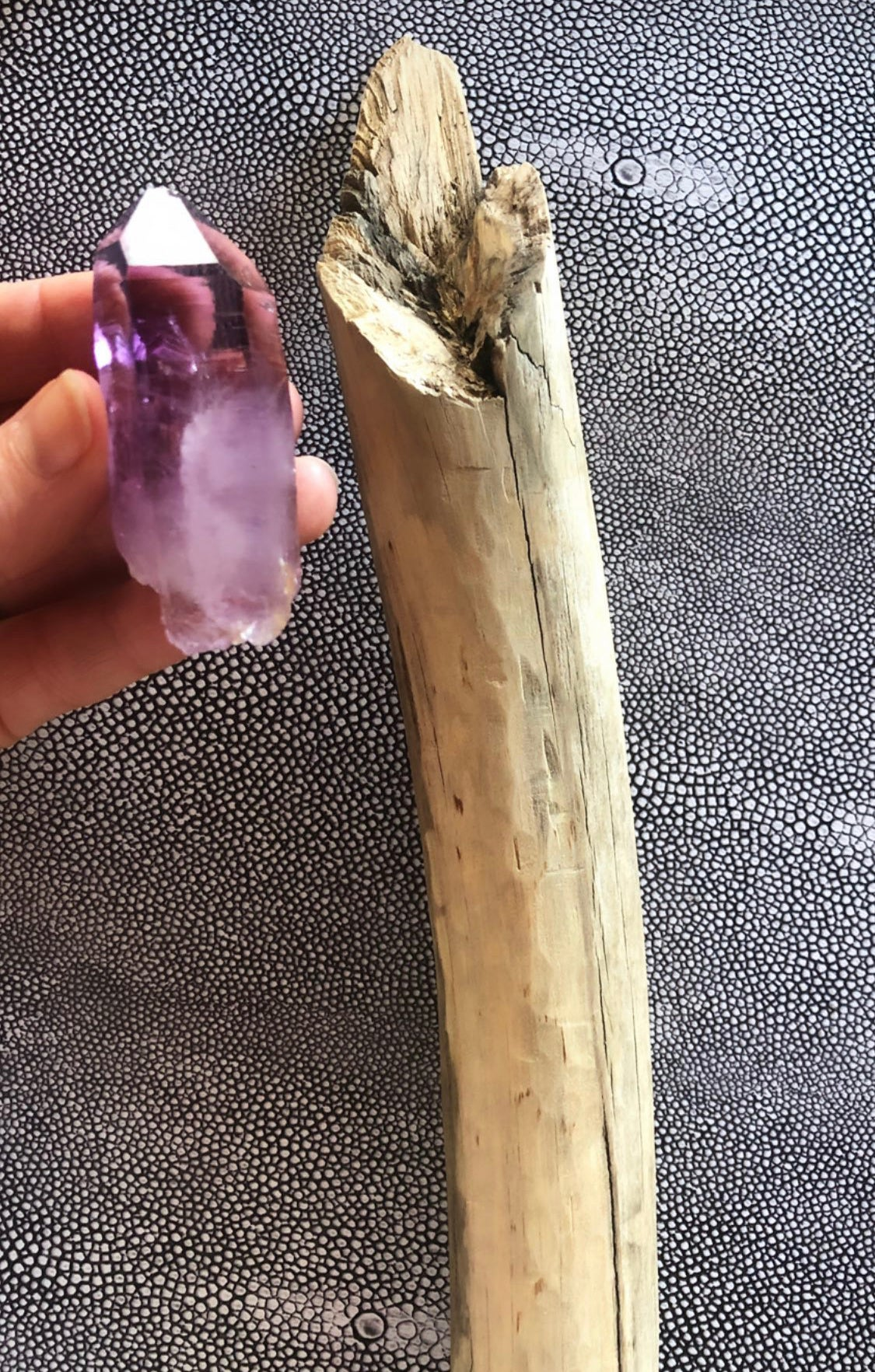 VEGA magic wand #1