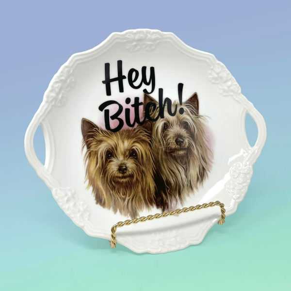 Image of Plates - Hey Bitch with 22kt Gold