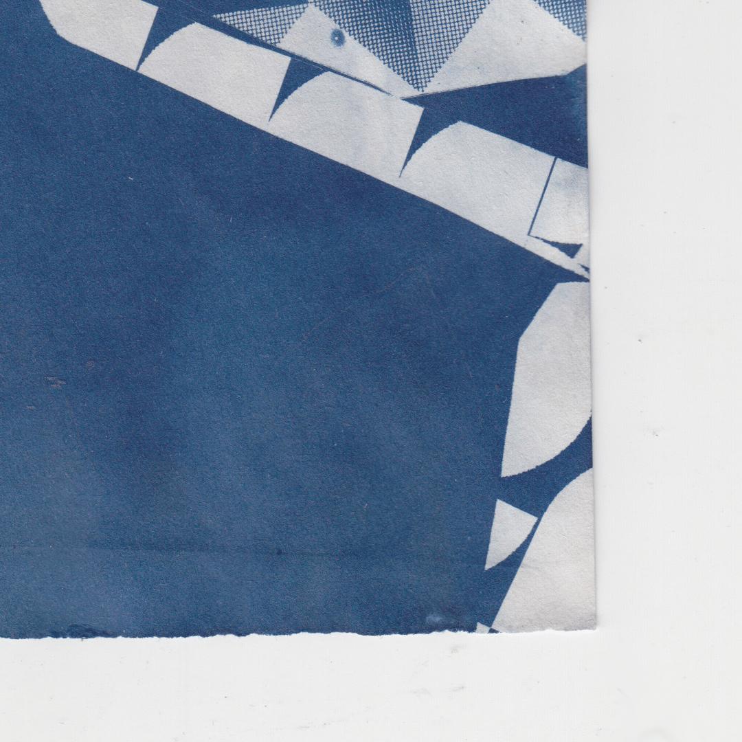 Image of Cyanotype 5.0