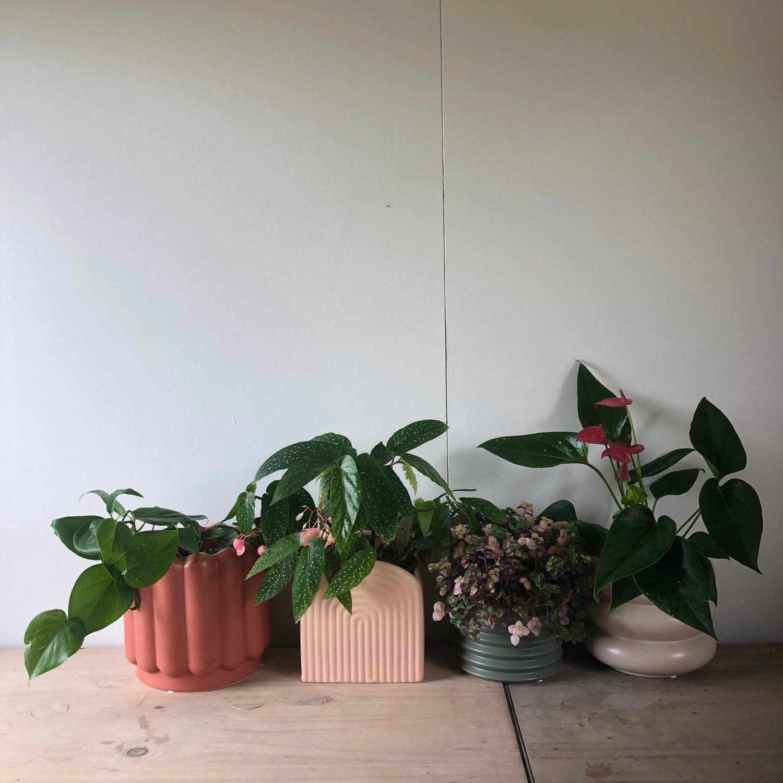 Image of Gatsby ceramic planter