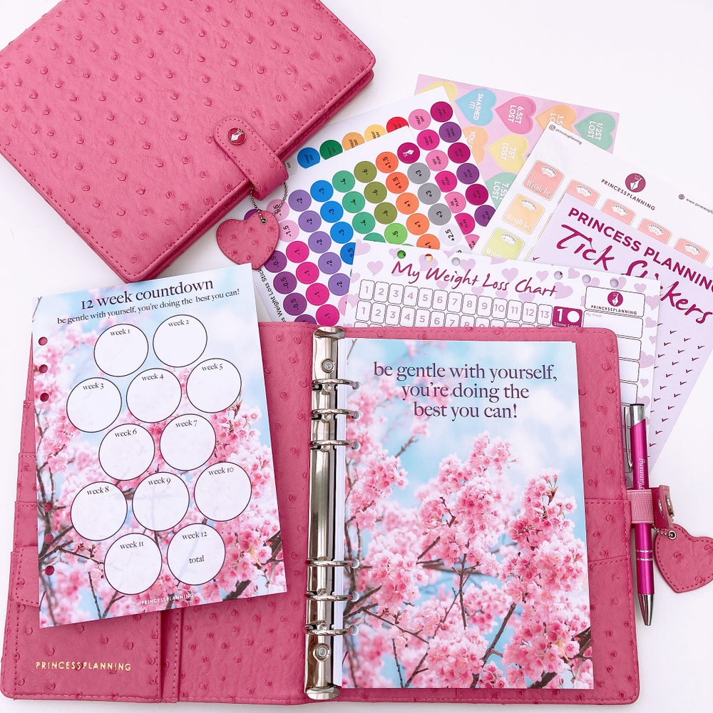 Image of PARIS PINK OSTRICH FULLY LOADED FOOD DIARY ORGANISER BUNDLE -BE GENTLE WITH YOURSELF