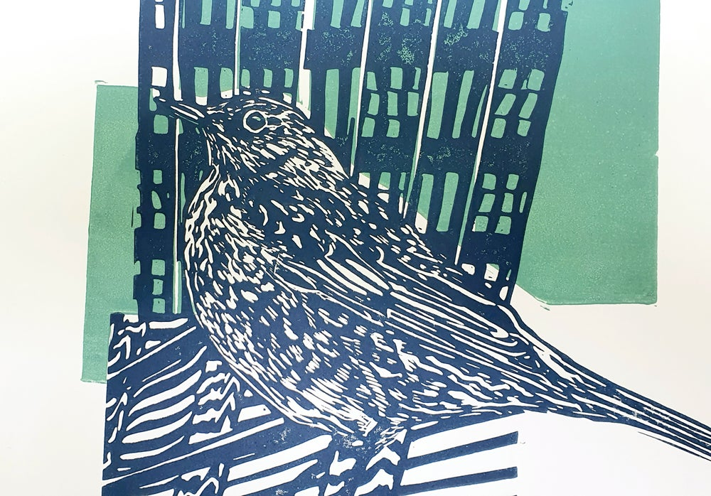 Image of Fieldfare in the City