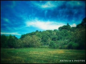 Image of Natalia's Photos