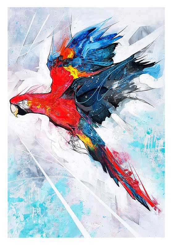 Image of Macaw In Flight - SIGNED OPEN EDITION PRINT - FREE WORLDWIDE SHIPPING!!!