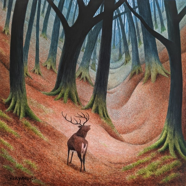 Image of Lone Stag