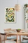 Papillons | Adolphe Millot | Retro Botanical Print | Vintage Poster | Wall art Print