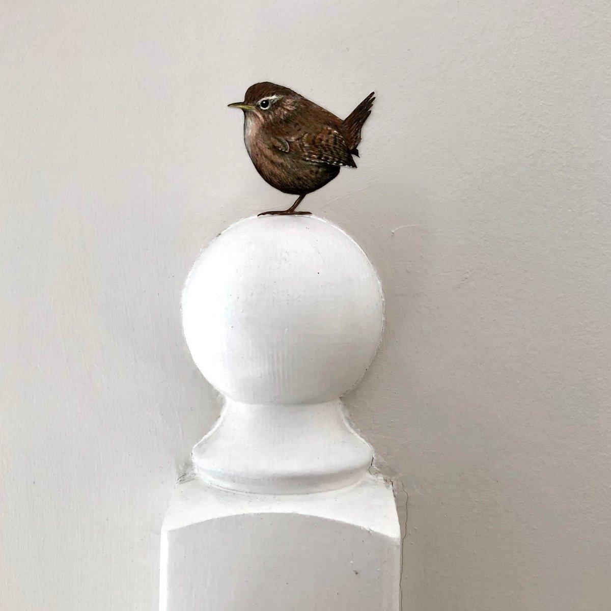 Image of Jenny Wren ~ Wall sticker.