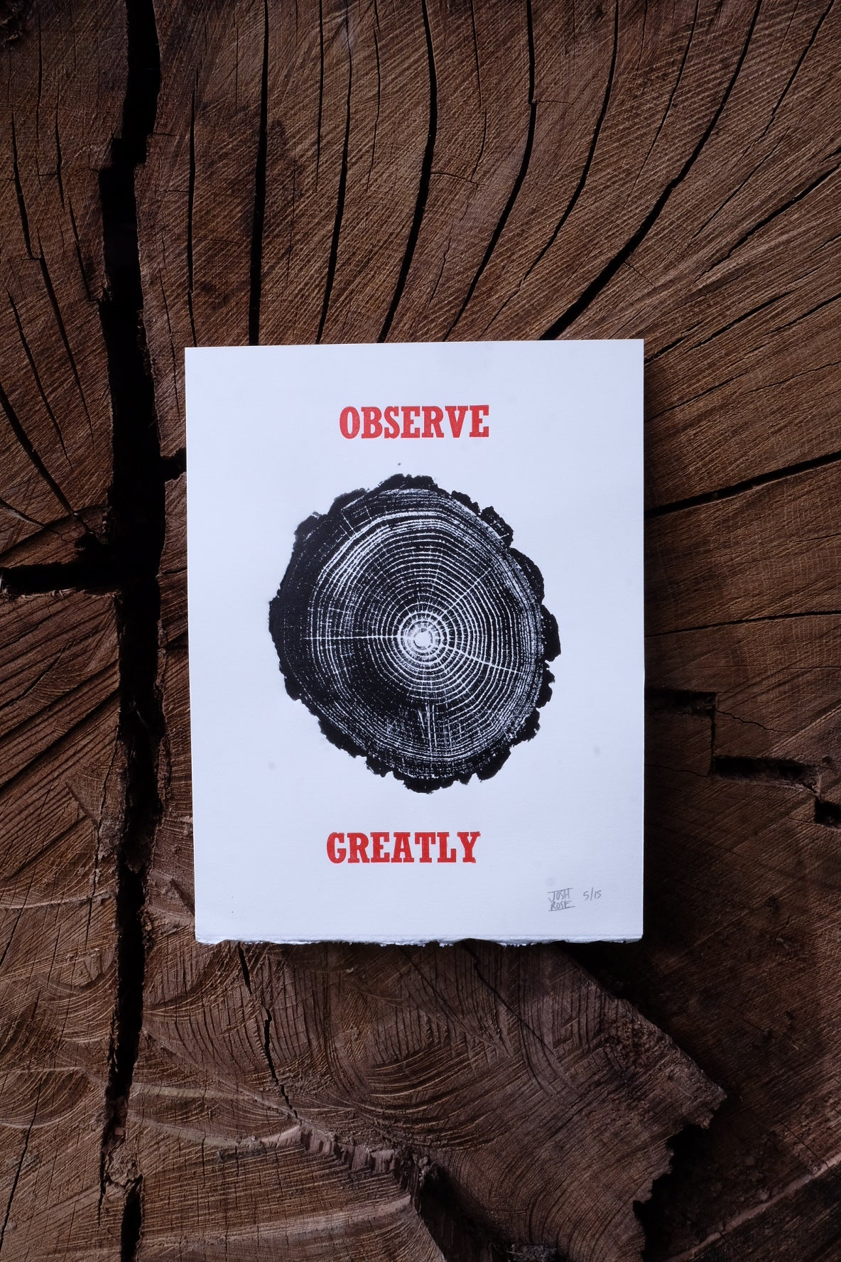 Image of OBSERVE GREATLY