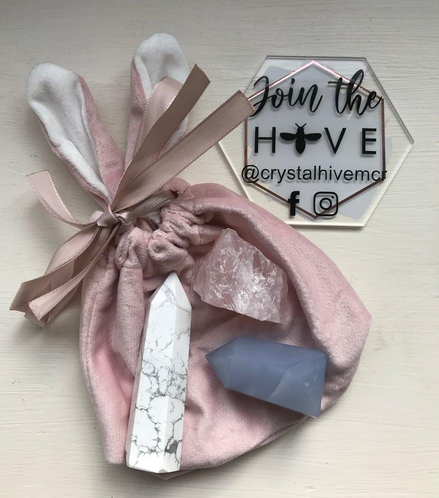 Image of Velvet Bunny Bag