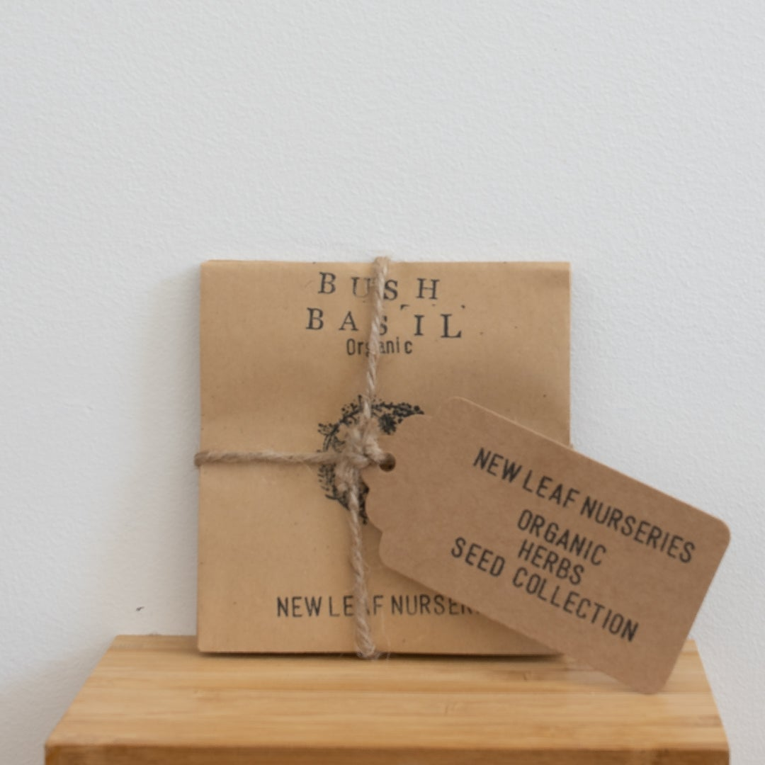 Organic Herb Seed Bundle