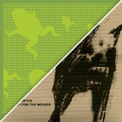 Image of The Danforths CDs - Look Out For the Wolves & Amphibian (CD)