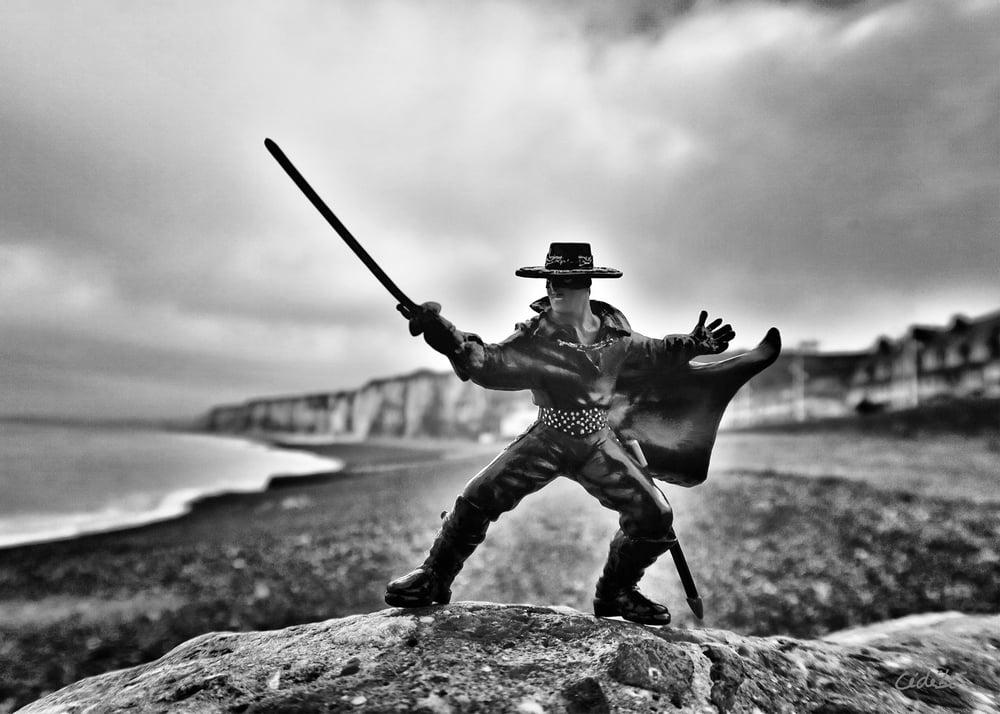 Image of Zorro !