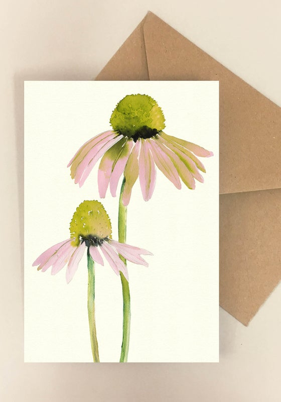 Image of 5 Notecards Echinacea No.1020