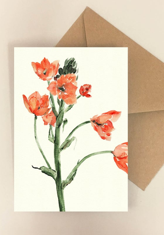 Image of 5 Notecards Ornithogalum