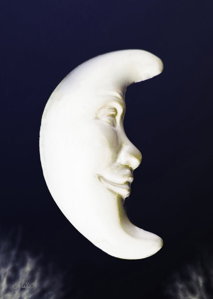 Image of La lune qu'on voit danser !