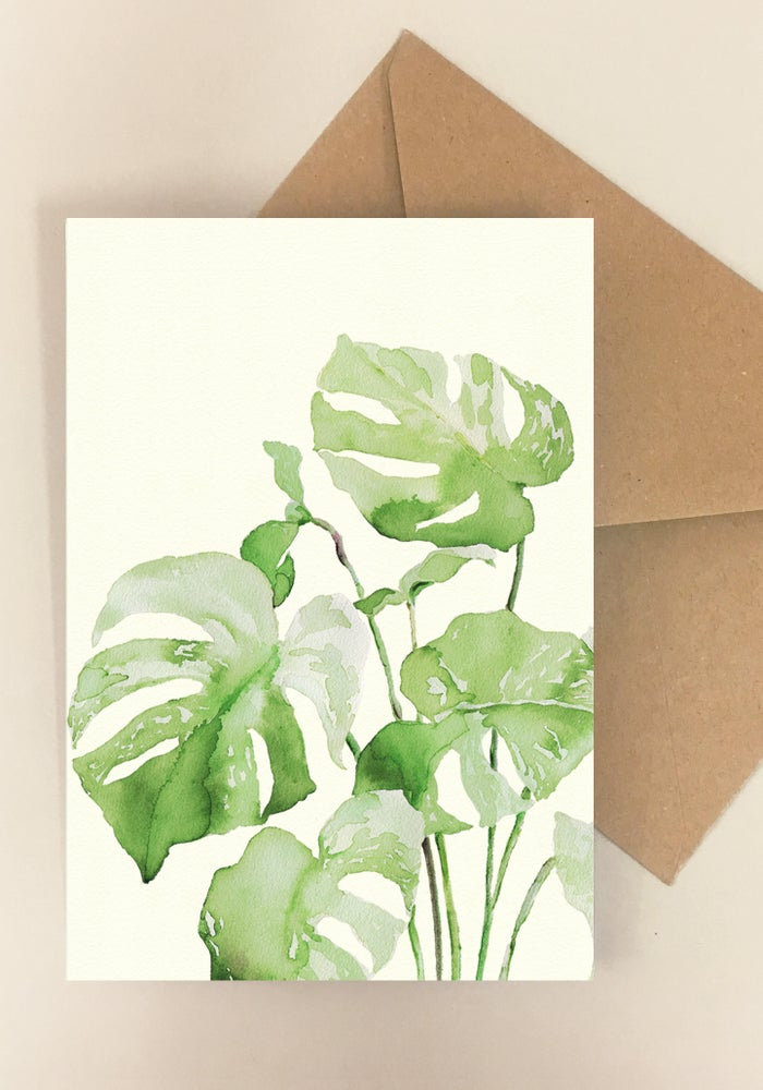 Image of Mix of 5 Plant Cards