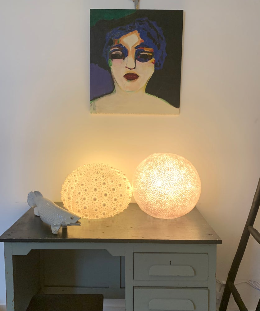 Image of Lampe oursin / corail